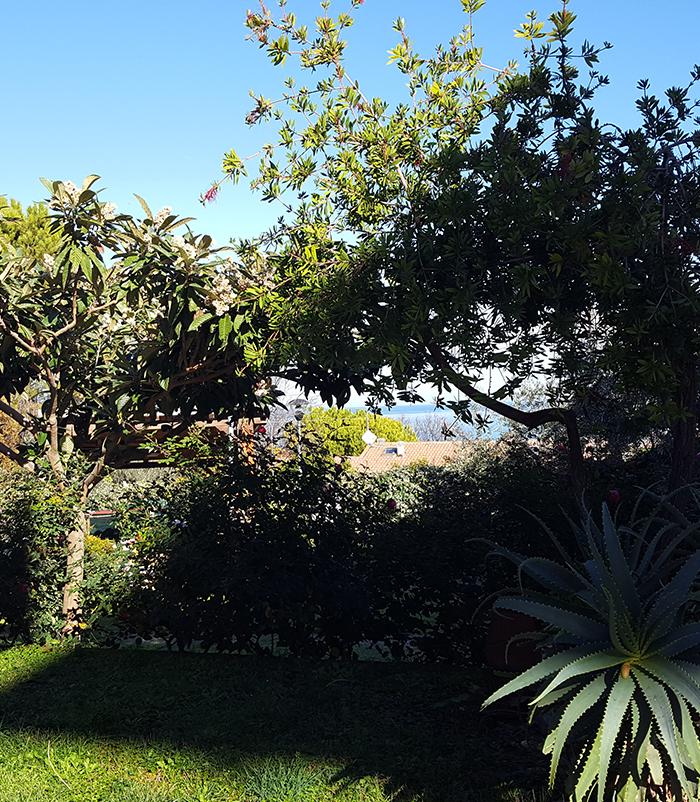 giardino_arold_francavilla